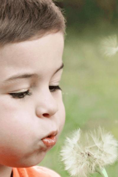 kid-dandelion