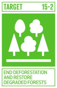 end deforestation