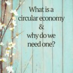 "Pinterest pin that reads ""What is a circular economy & why do we need one?"" with an image of flower buds against teal blue planks"