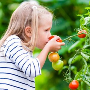 girl with red tomato