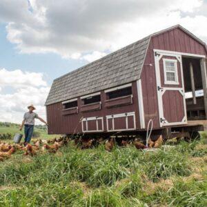 Spring creek farms pastured livestock