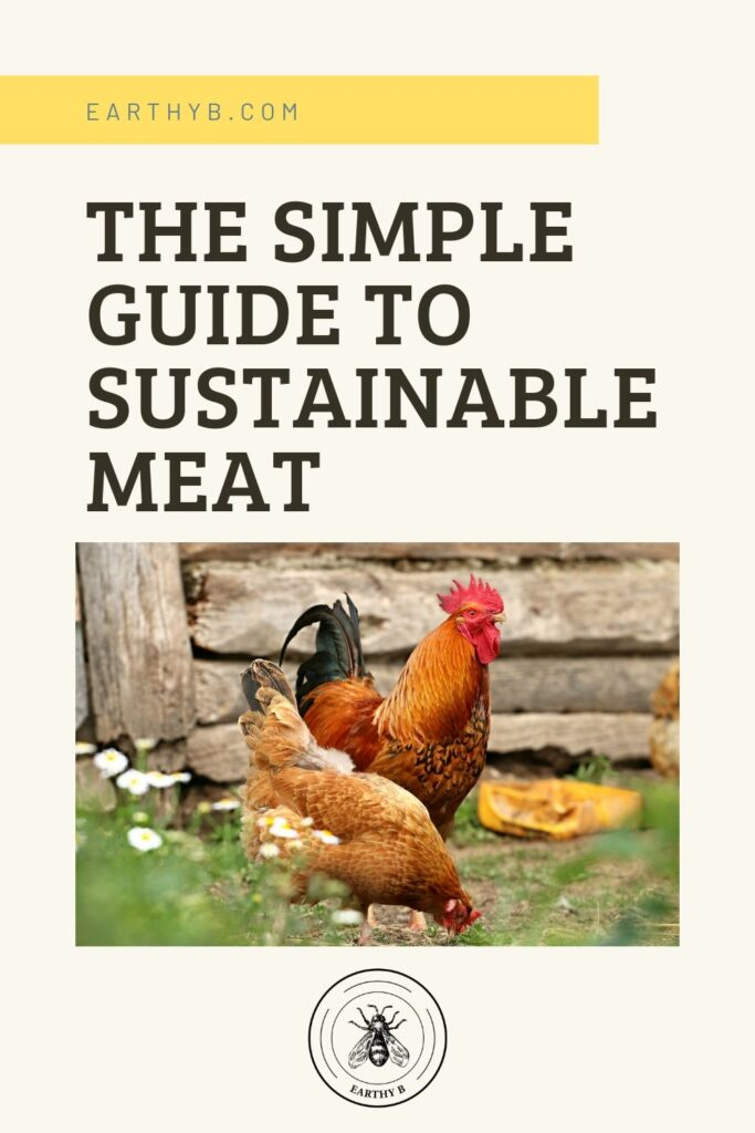 "Pin reads ""The simple guide to sustainable meat"" with a picture of two chickens on a regenerative farm."