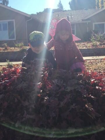 kids playing in leaves in front of house