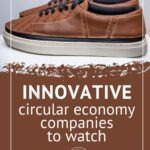 "Pinterest pin with text that reads ""Innovative circular economy companies to watch"" with an image of a salubata modular shoe."