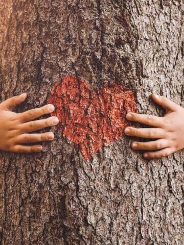kids hands hugging tree with a heart